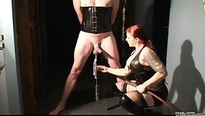 Playful Shake out CBT femdom porn