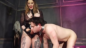 Thick Domme introduces her waiting upon to her whacking big phallus
